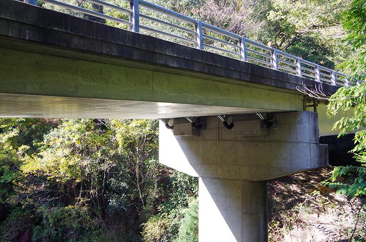 国道311号(和田谷1号橋)道路保全工事